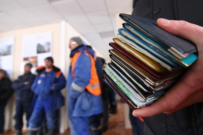Жамбыл облысында 38 заңсыз еңбек мигранты ұсталды