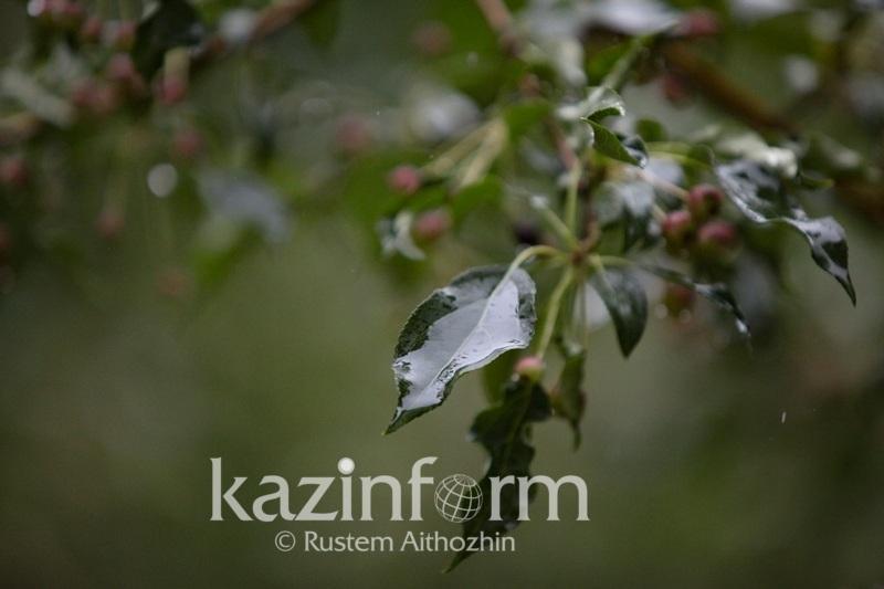 В Казахстан начнет поступать прохладный воздух с севера