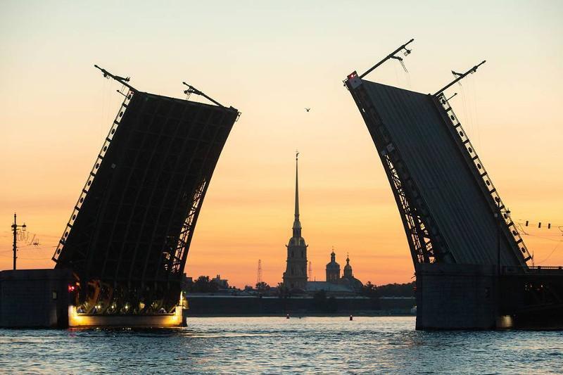 Summits of BRICS and SCO will be held in St. Petersburg — Putin