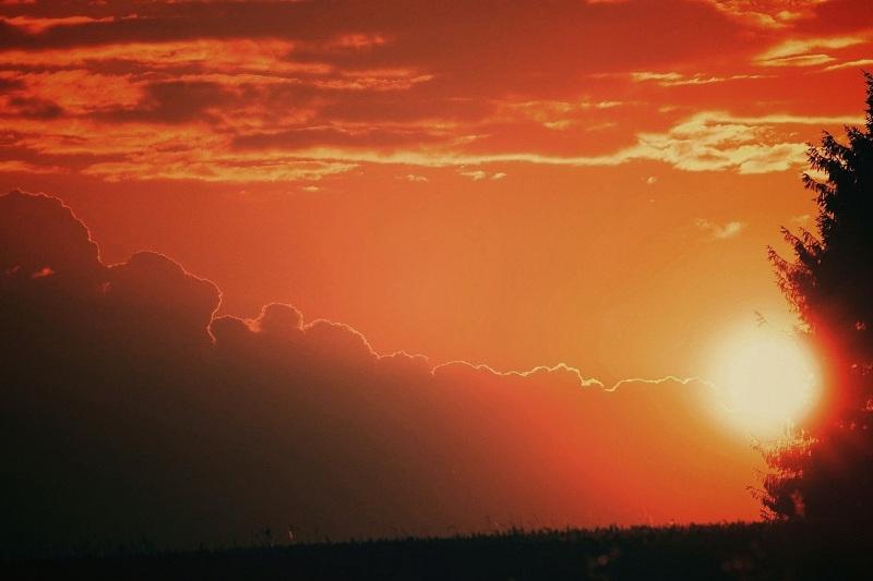 Ақмола облысында күн 36 градусқа дейін ысиды