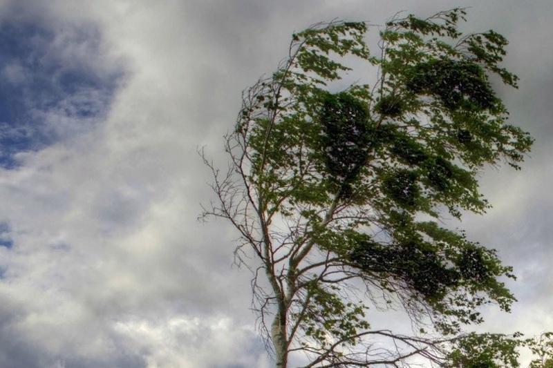 High wind alert issued in Atyrau region