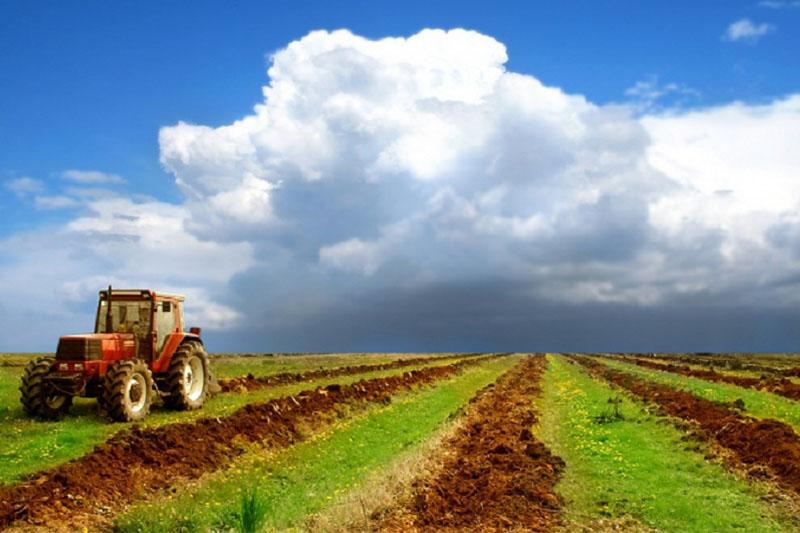 Вопрос о моратории на продажу сельхозземель рассмотрят на Нацсовете
