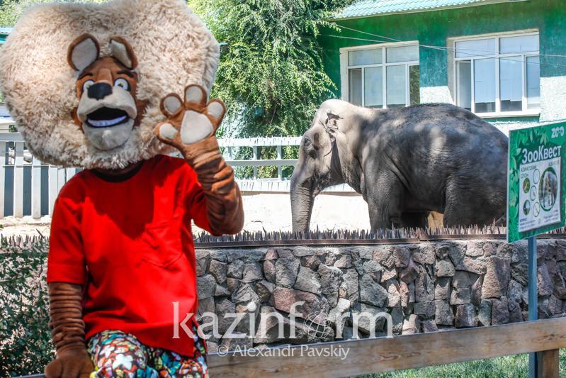 夏日的阿拉木图动物园