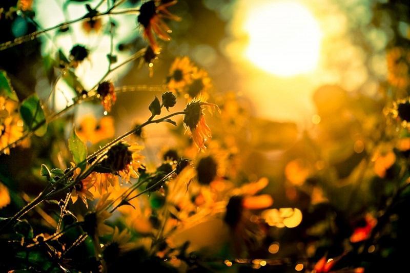 Еліміздің бірқатар өңірінде ауа райына байланысты ескерту жарияланды