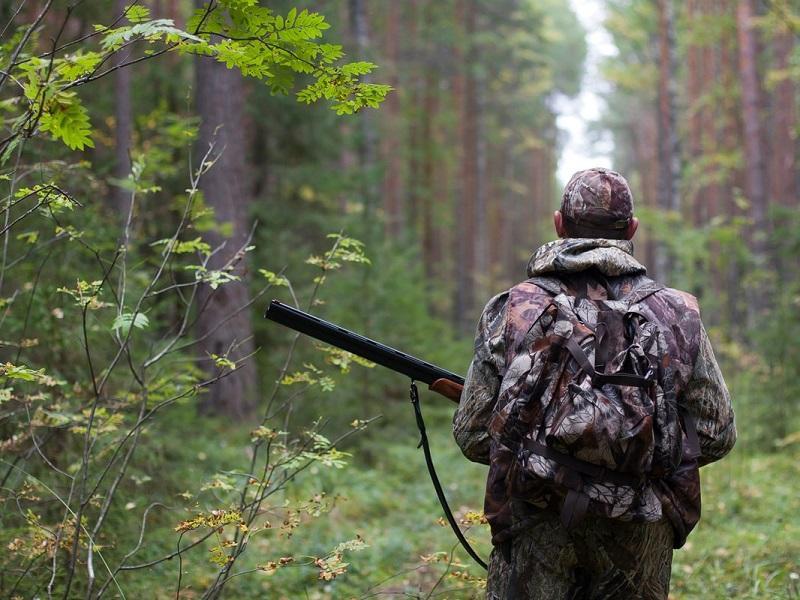 Поручение Президента: уголовное наказание ужесточат для браконьеров в Казахстане