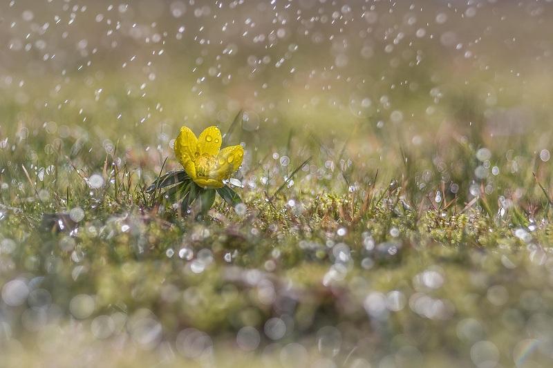 Дождливо будет в Казахстане 24 июля