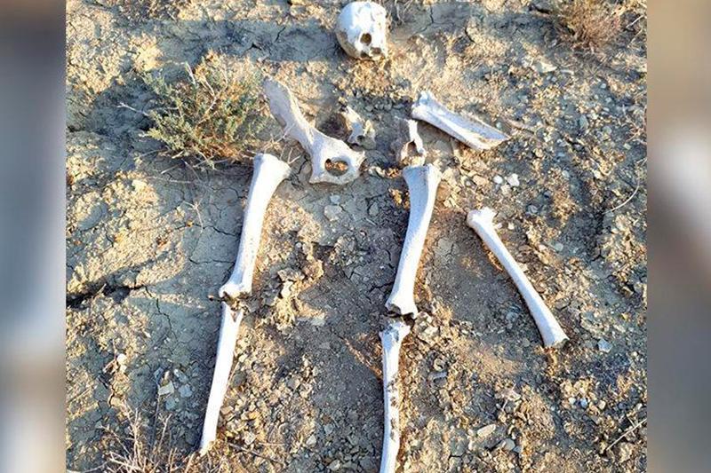 Қарақияда табылған адам қаңқасы сараптамаға жіберілді