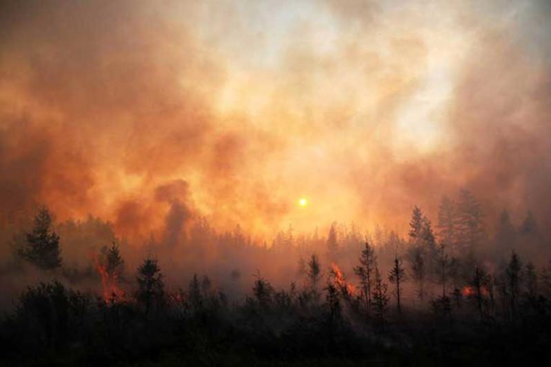 内务部:俄罗斯西伯利亚大火不会威胁到哈萨克斯坦