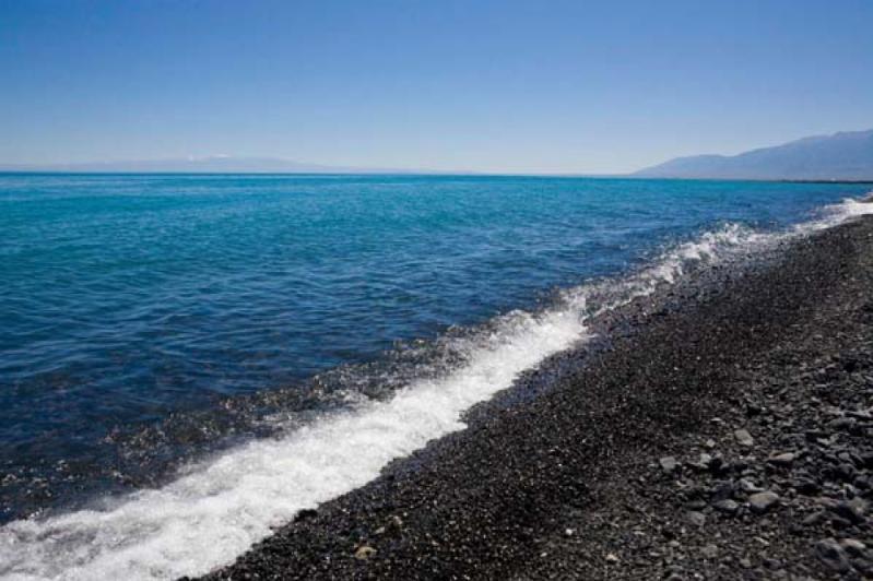 Алакөлдегі су сынамасының нәтижесі белгілі болды