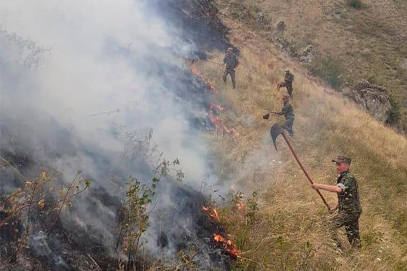 阿拉木图州野火致3人死亡7人受伤