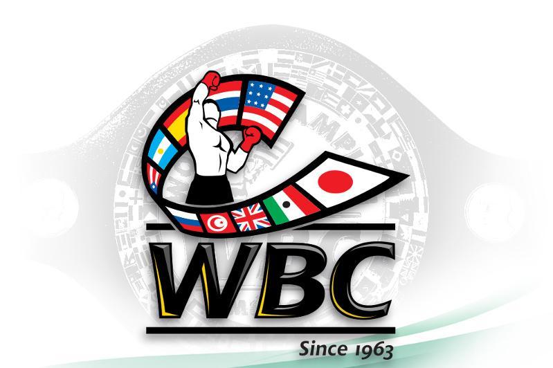 WBC: قازاقستاندىق كاسىپقوي بوكسشىلاردىڭ رەيتينگى جاريالاندى