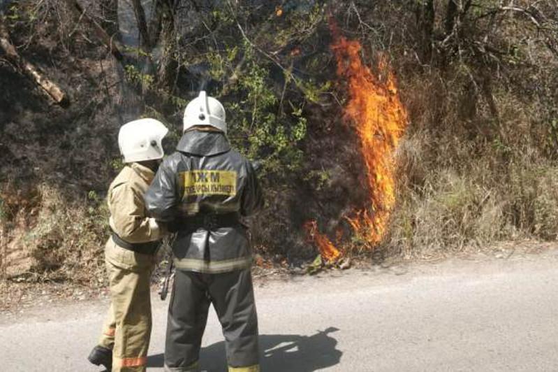 Очередной природный пожар в Алматы: сухостой горит на дороге Медеу - Шымбулак