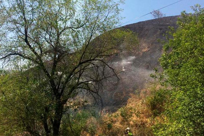 Незначительное загрязнение воздуха выявлено после пожаров на Кок-Тобе
