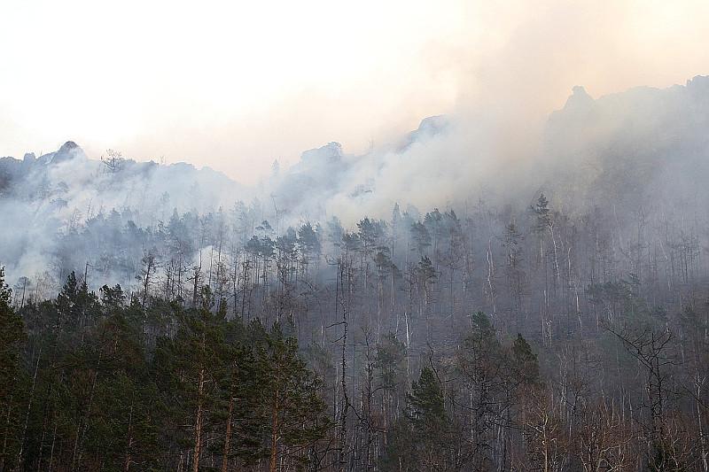 В Иркутской области горит более 765 тысяч га леса