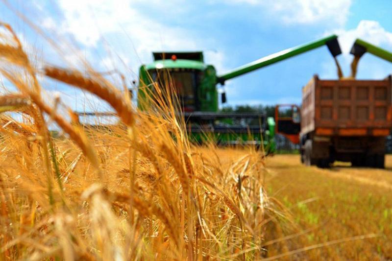 哈萨克斯坦农业生产值增长3.5%