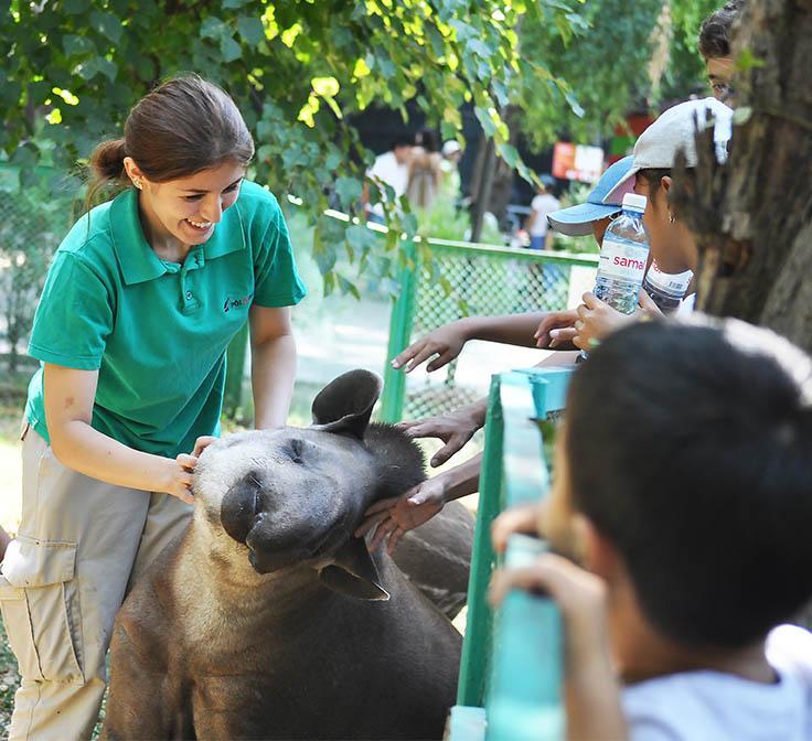 Новая ветеринарная клиника появится в зоопарке Алматы