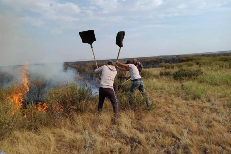 Two more steppe fires break out in Karaganda rgn