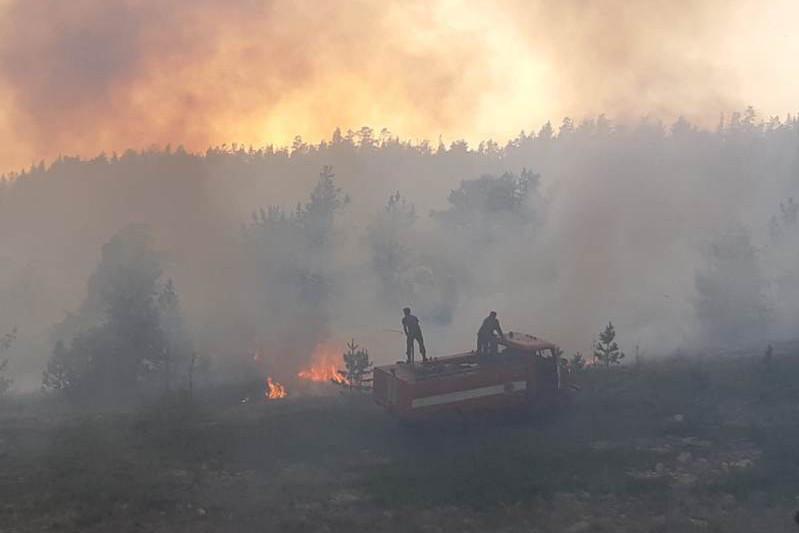 Интенсивное развитие пожара в Каркаралинском нацпарке остановлено