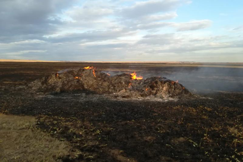 Степной пожар произошел в Костанайской области