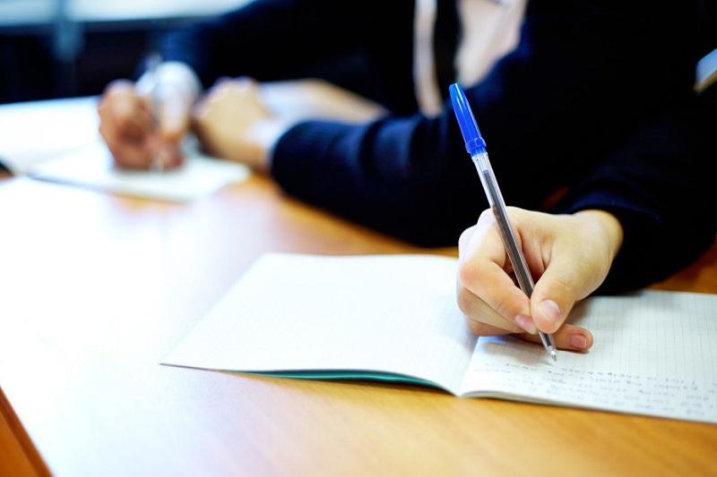 Основы предпринимательства начнут преподавать в 75 школах Костанайской области