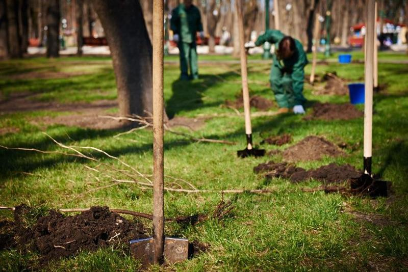 Парк на 5 гектарах разобьют в Атырау