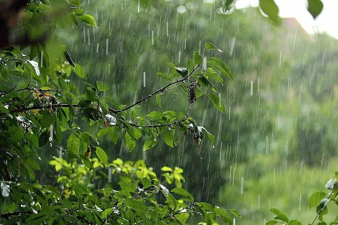 Rainy weather forecast in Kazakhstan Aug 17