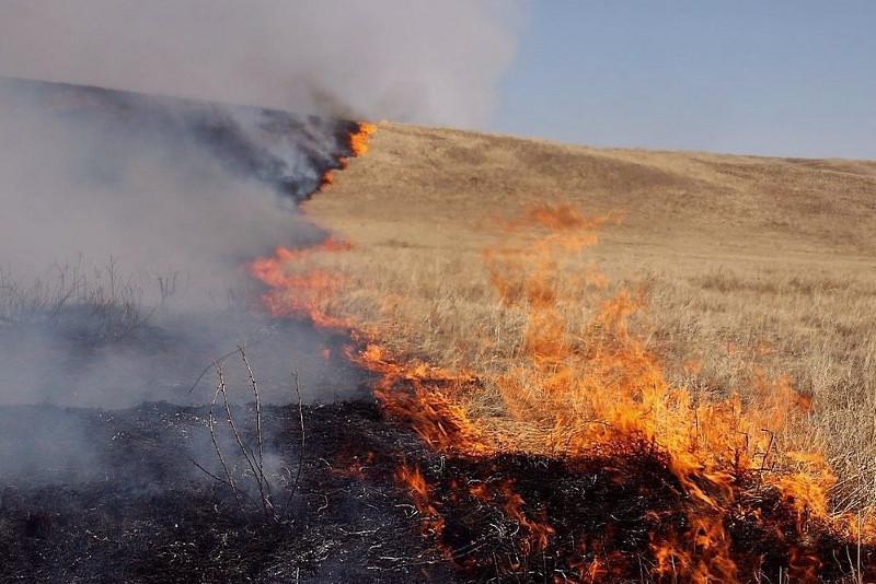 Очаги горения в Бахтинском лесничестве потушены