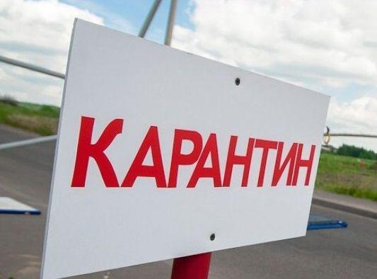 В селе Акмолинской области объявлен карантин: у пяти человек подозревают сибирскую язву