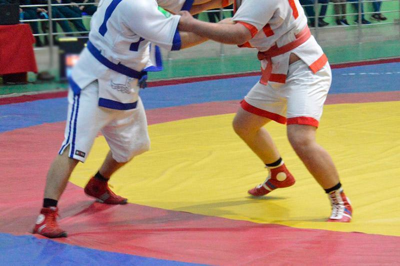 哈萨克式摔跤亚锦赛:哈萨克斯坦代表团获得3枚金牌