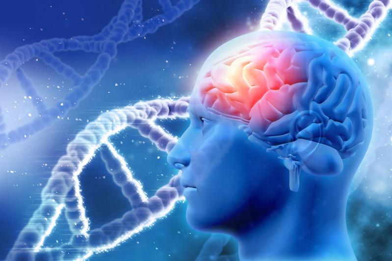 Genes linked to Alzheimer's risk, resilience identified