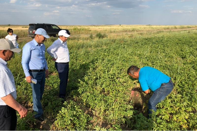 Систему орошения земель восстанавливают в Карагандинской области