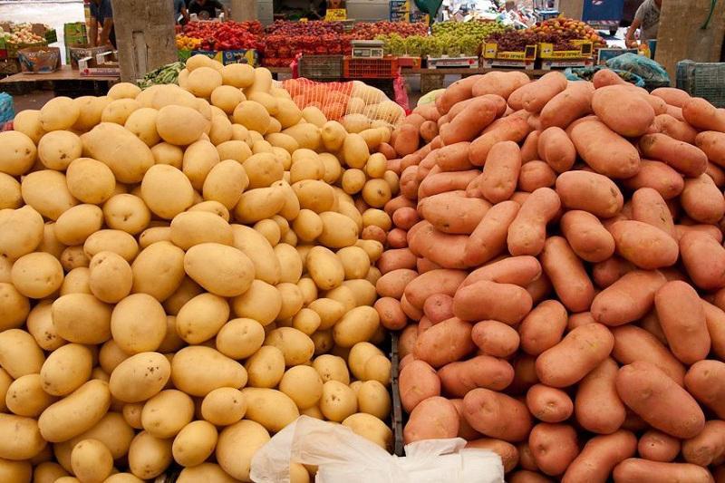 今后商场需为国产食品商品提供不低于30%的货架空间