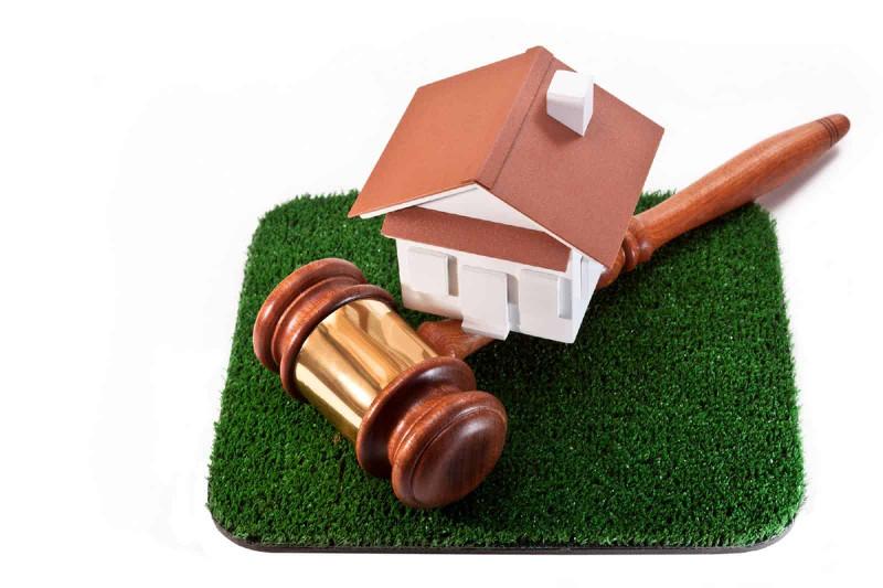 В 10 раз выросла цена на земельный участок на аукционе в СКО