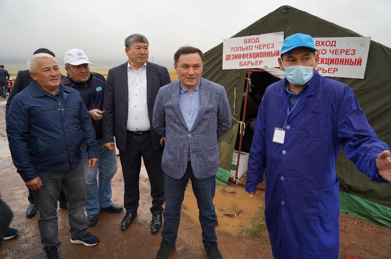 Сибирская язва в Ольгинке: карантин снимут полностью 30 августа