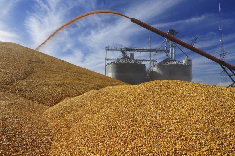 截止目前哈萨克斯坦共收获粮食近337万吨