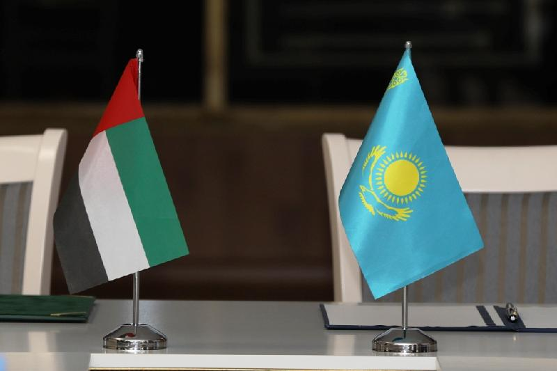 哈萨克斯坦大使会见阿联酋副总理