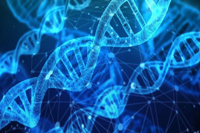 WHO启动全球人类基因组编辑注册计划