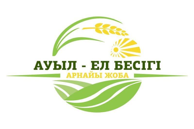 Более 100 проектов реализуют в рамках программы «Ауыл - ел бесігі» в Туркестанской области