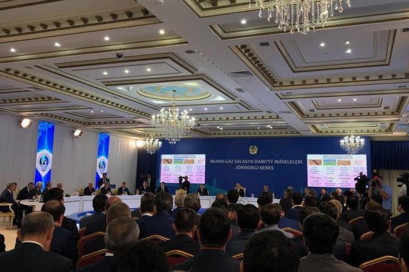 Мырзағалиев мұнай-газ шаруашылығындағы экологиялық проблемалар туралы айтты