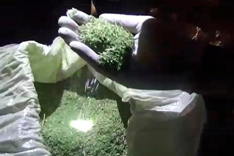 Шу қаласының 40 жастағы тұрғынынан 12 қап марихуана табылды