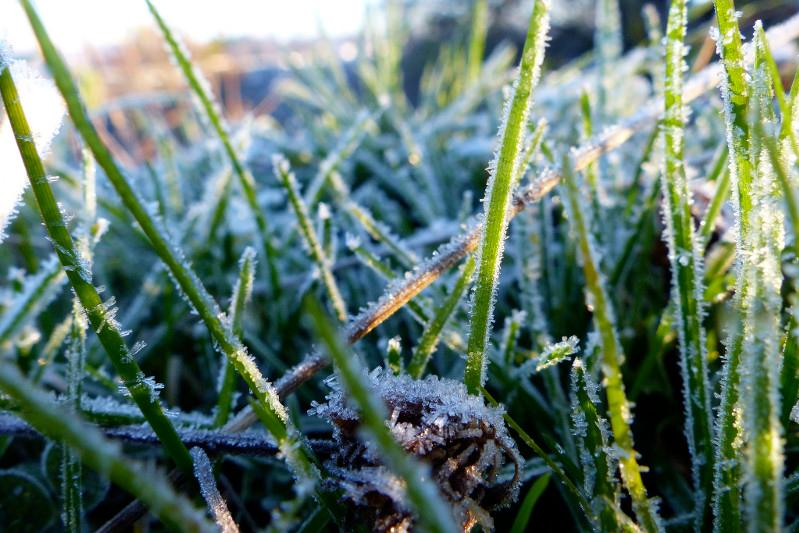 Cold spell heading to Akmola region