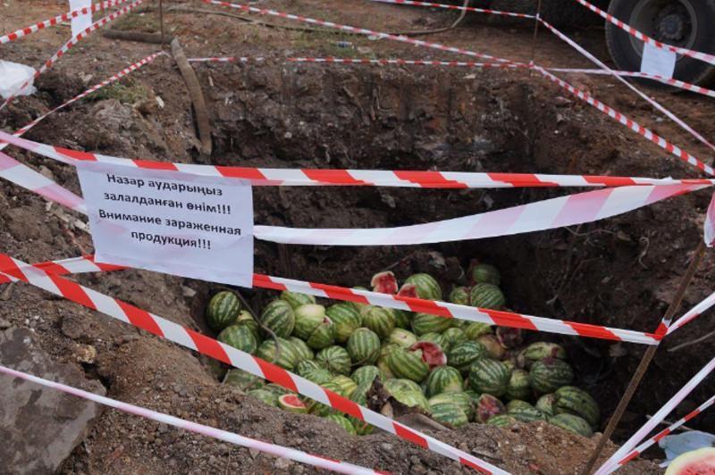Зараженные арбузы уничтожили в Нур-Султане