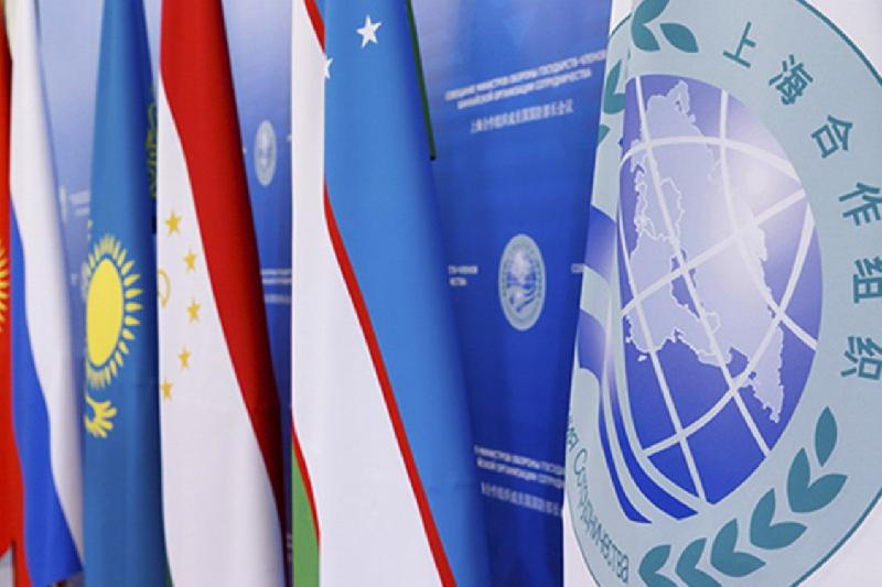 SCO countries to hold drills focusing on thwarting terrorist use of Internet