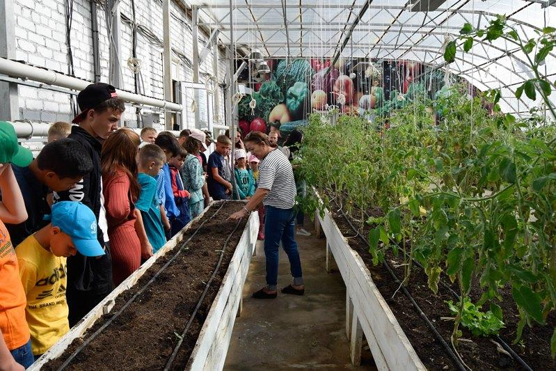 Воспитанникам детдомов Караганды организовали экскурсию в экоаул