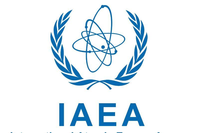 国际原子能机构第六十三届大会开幕