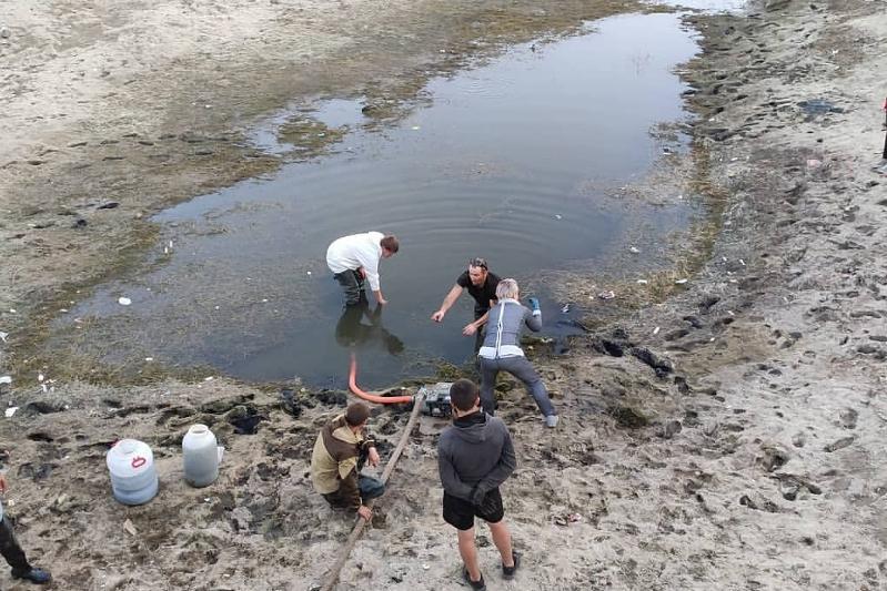 Ақтөбелік еріктілер құрғап қалған өзен балықтарын құтқаруда