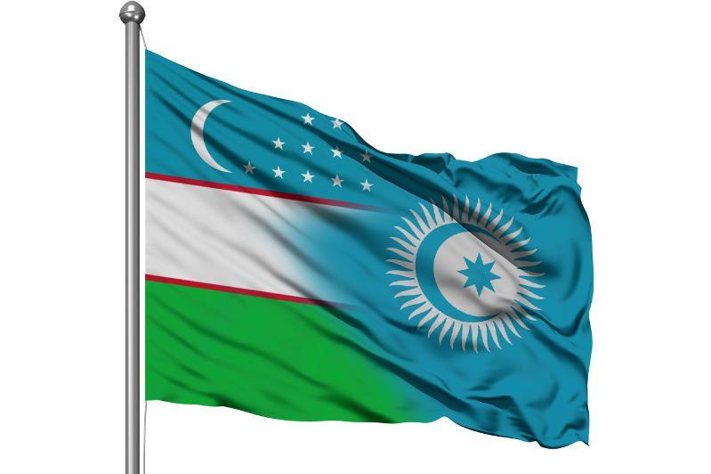 Узбекистан в этом году станет полноправным членом Тюркского совета