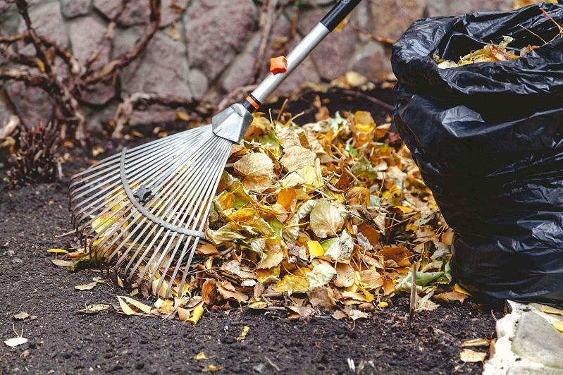 Осенний экологический месячник стартовал в столице