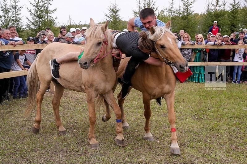 В Татарстане возрождают древнюю борьбу на лошадях