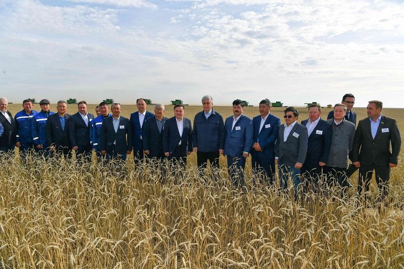 Новые сорта зерновых и масличных культур представили Президенту в Акмолинской области
